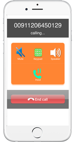 iPhone Twin Dialer